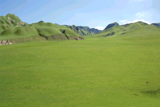 """Oceanic"" grass plains on the planet Naboo"