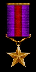The Bronze Star can be awarded by any member of Mandalore Command for exceptional service to the military. This could include the introduction of new aspects to the Mandalore military or service above and beyond the call of duty in an officers assigned function.