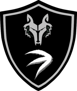 The Shadow Hunter Task Force Insignia